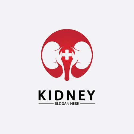 Health and Care Kidney Logo Design Concept. Urology Logo Vector Template 스톡 콘텐츠 - 152695451