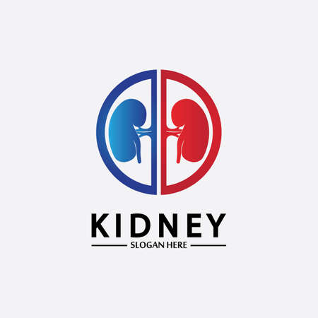 Health and Care Kidney Logo Design Concept. Urology Logo Vector Template 스톡 콘텐츠 - 152695520