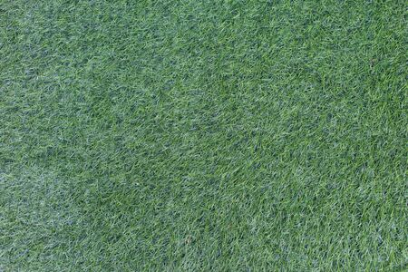 carpet clean: Grass Background.