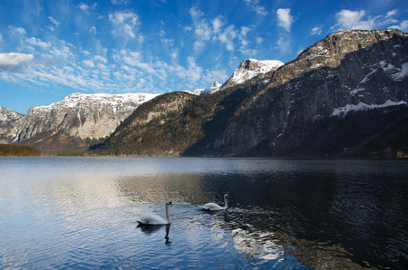 trave: Alps range with lake, swans and nice sky in Austria Stock Photo