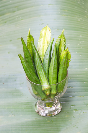 winged: Fresh okra and winged beans Stock Photo