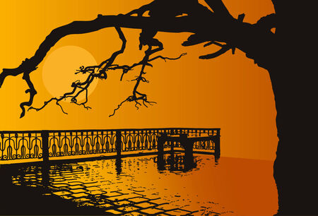 tranquil scene on urban scene: sunset on the quay old tree and metal fence on the background