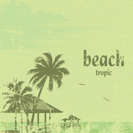 방갈로: 그런 열대 해변 야자수와 부두