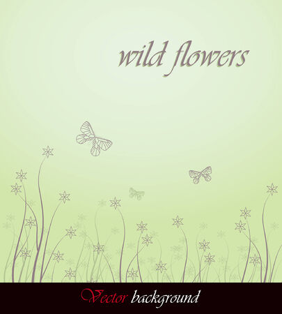 wild flower background with butterfly  Vector