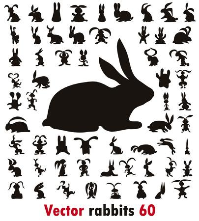silhouette lapin: 60 lapins différentes sur le fond blanc