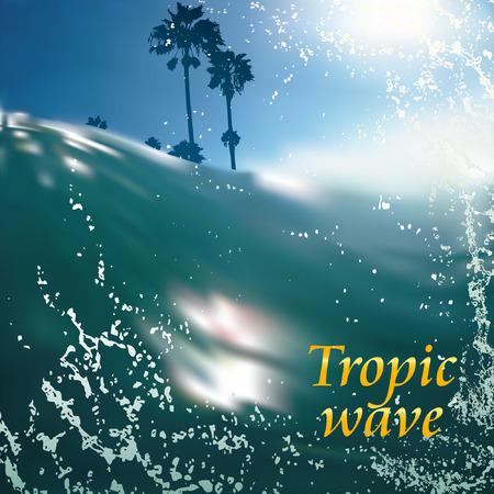tropic wave beach palms and sun