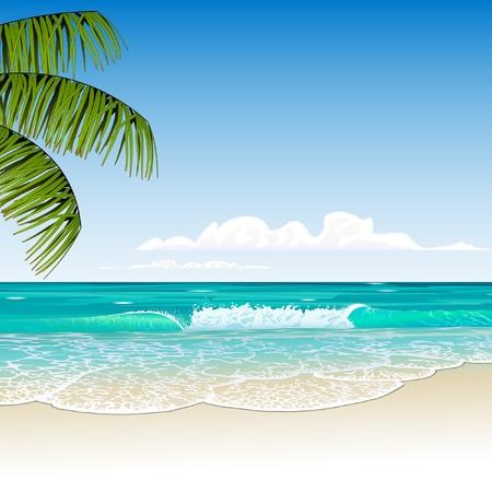 hawai: tr�pico playa Vectores