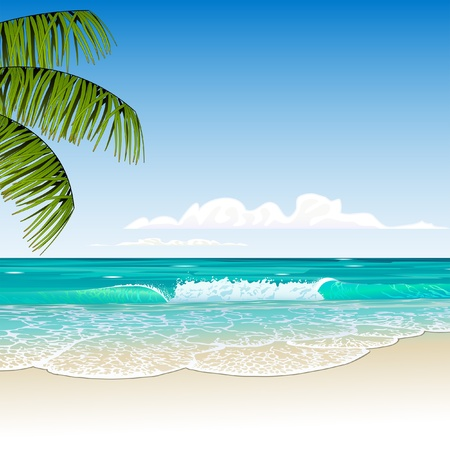 paesaggio mare: tropicale spiaggia