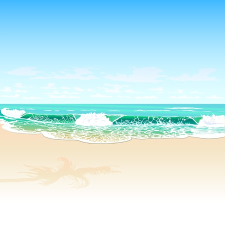 palm beach: tropic beach