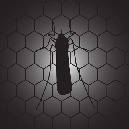 Mosquito on the mosquito net Vector