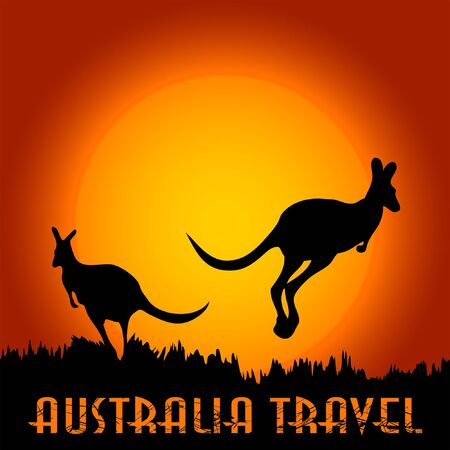 australia landscape: Kangaroo in Australia at the sunset Illustration