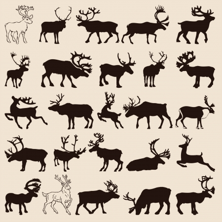 antlers silhouette: 25 different reindeer