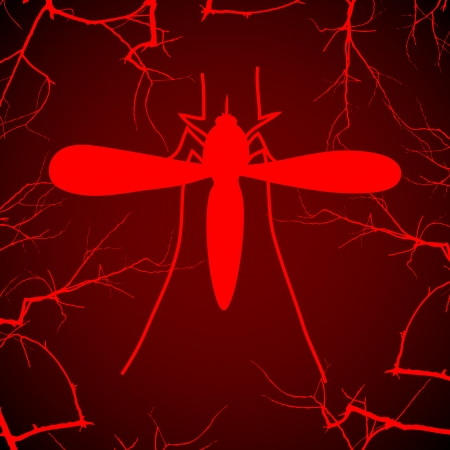 disease carrier: Mosquito on the red
