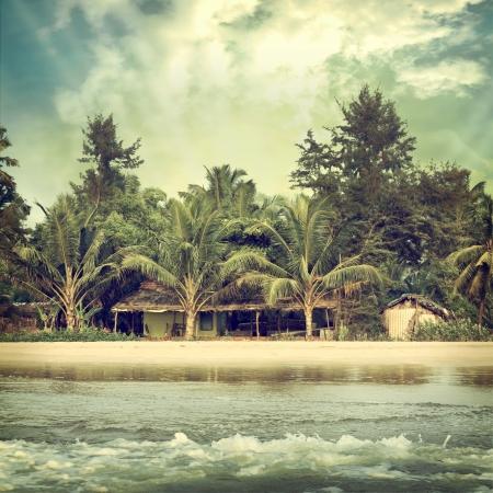cabane plage: Fond paume Vintage
