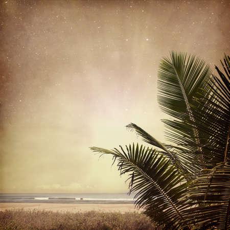 Vintage nature background photo