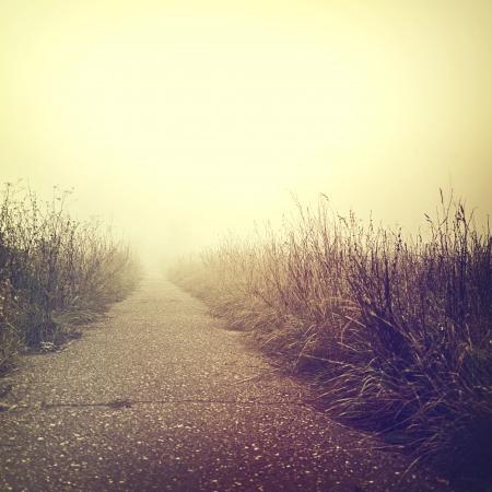 ビンテージ: ヴィンテージの自然の背景 写真素材