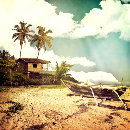 hawaii: Vintage beach background