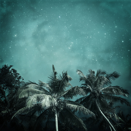 night tropic background in vintage style