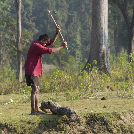 nepali: Nepali villager cutting wood, Bardia, Nepal