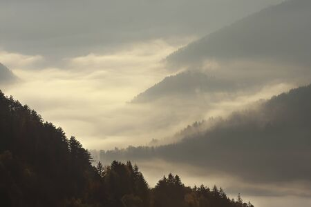 moutains: misty morning in Vosges moutains, France