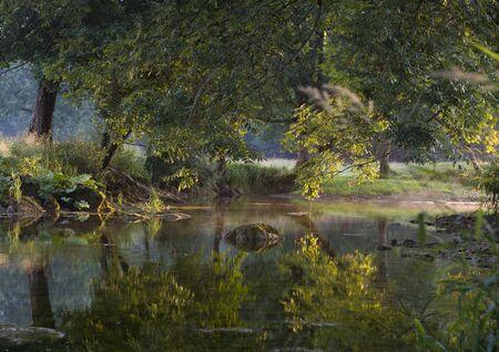 jura: reflection on a river in Jura, France