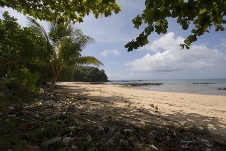 trang: dirty beach full of rubbish, Koh Libong, Trang province, Thailand