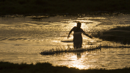 india fisherman: Sunset backlit in Arugam bay lagoon