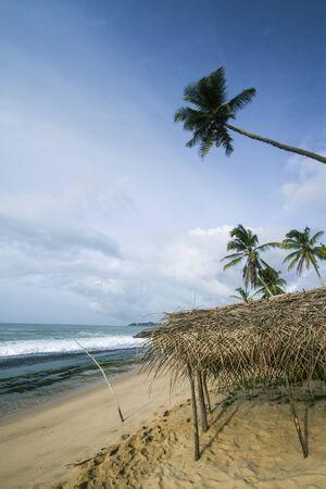 tangalle: Tangalle paradise beach in the morning, Sri Lanka