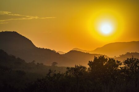 kruger park: amazing sunset in savannah, Kruger park Stock Photo