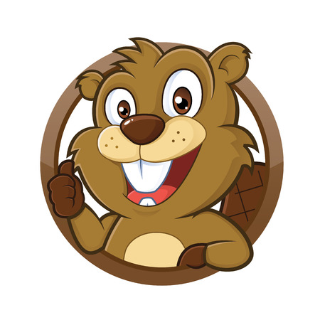 castor: Beaver dando pulgar hacia arriba Vectores