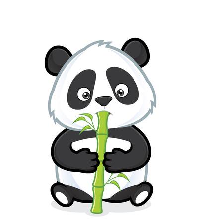 oso panda: Panda comiendo bambú