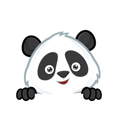oso panda: Panda sosteniendo y mirando por encima de un tablero de la muestra en blanco