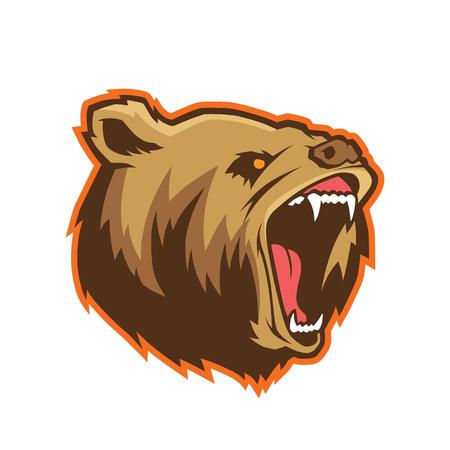 Bear head mascot Illustration
