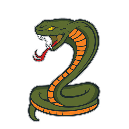 serpiente cobra: Serpiente de la cobra de la mascota Vectores