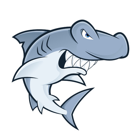 hammerhead shark: Hammerhead shark
