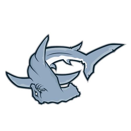 pez martillo: mascota del tiburón martillo