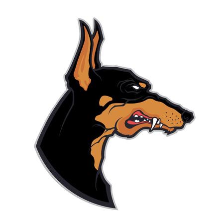 pincher: Doberman head mascot Illustration