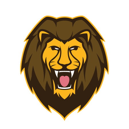 Lion head mascot Ilustrace