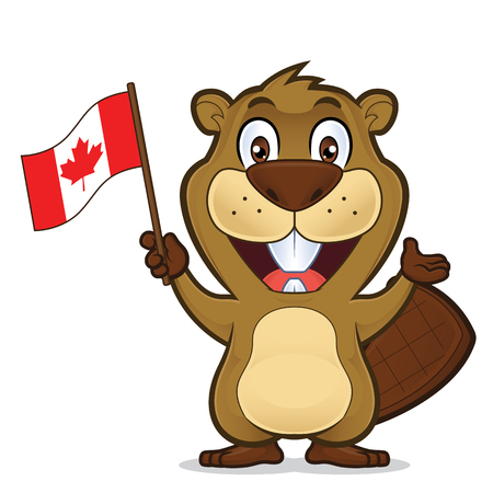 Beaver holding canadian flag Illustration