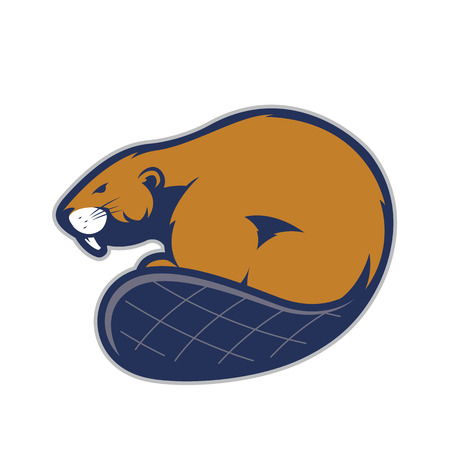 Beaver mascot Illustration