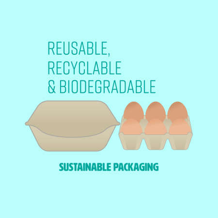 Cardboard egg box and tray with text representing sustainable packaging. Vector illustration.