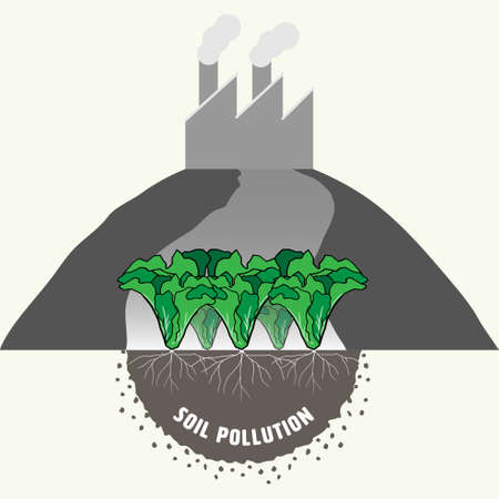 Vegetable garden showing roots in soil, representing industrial activity causing soil pollution and impact to food safety. Vector illustration.