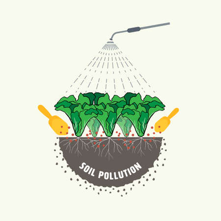 The use of fertilizer and pesticide for vegetable farming causing soil pollution. Vector illustration.