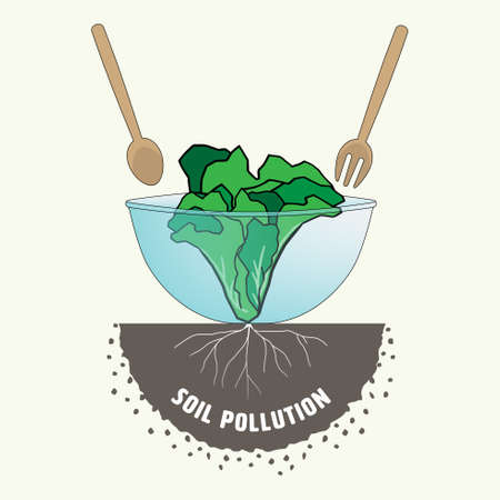 Vegetable in salad bowl connected to root in soil representing soil pollution impact to food consumption. Vector illustration. Vektorgrafik