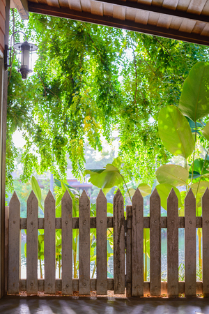 White Picket Fence photo