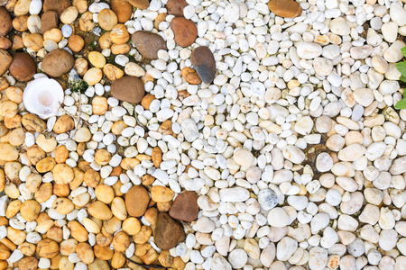 white pebbles background texture