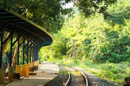 forest railroad: Ancient railway station and big green tree