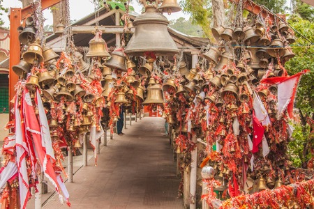 The Chitai temple is called the temple of a million bells and situated through a thick forest of chir pines
