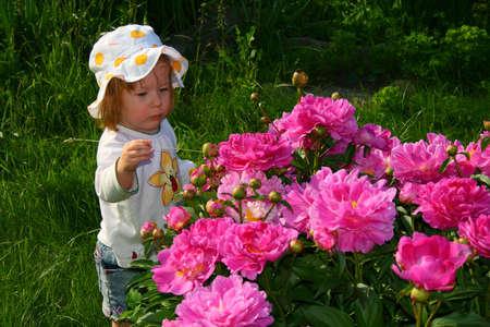 小さなかわいい女の子と赤の美花
