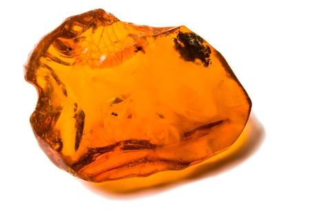 Amber on white background photo
